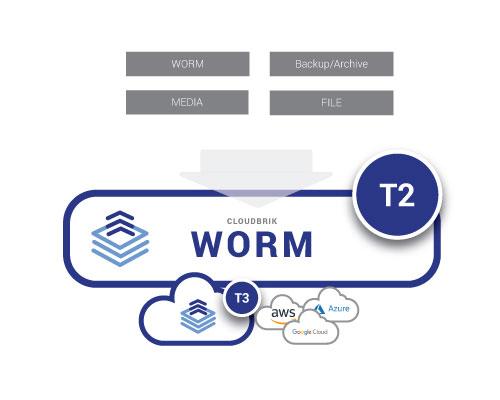 CLOUDBRIK_T2_WORM_target-1